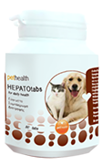 PET_HEALTH_HEPAT_5926a7102992b.png