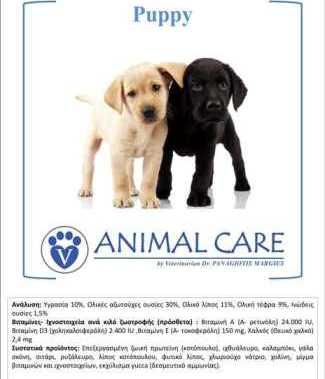 animal-care-puppy.jpg_product_product_product_product_product_product_product