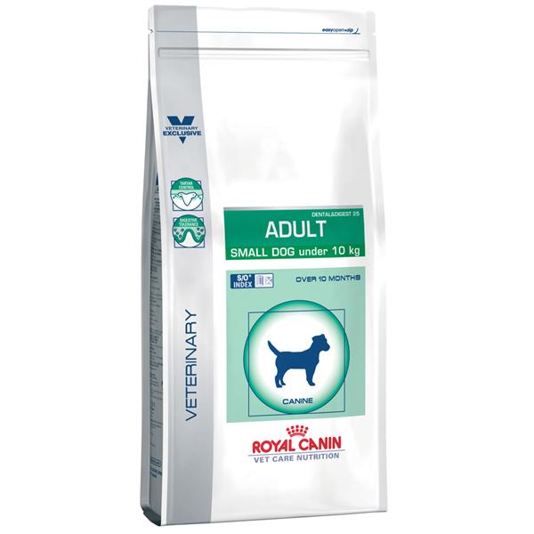 pediatric-starter-mother-babydog.jpg_product_product_product_product_product_product_product_product_product_product_product_p