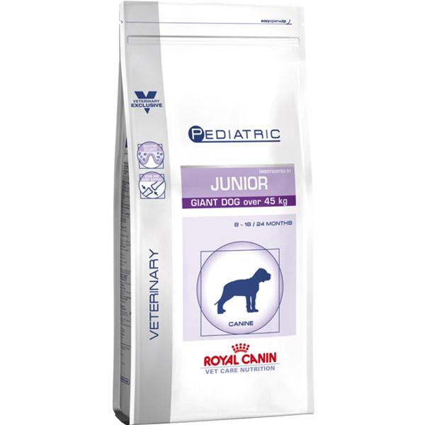 pediatric-starter-mother-babydog.jpg_product_product_product_product_product_product_product_product_product_product